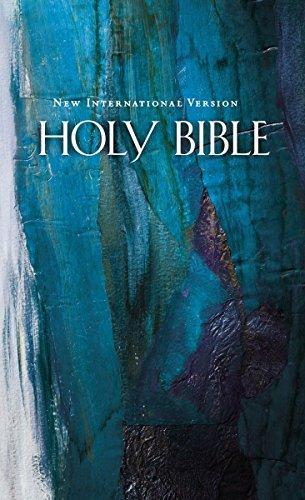 9781563201431: NIV, Economy Bible, Hardcover, Blue