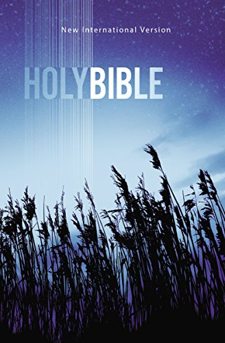 9781563205774: NIV, Outreach Bible, Paperback, Blue