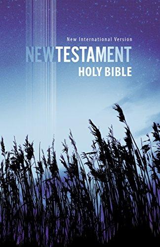 9781563205781: NIV, Outreach New Testament, Paperback, Blue