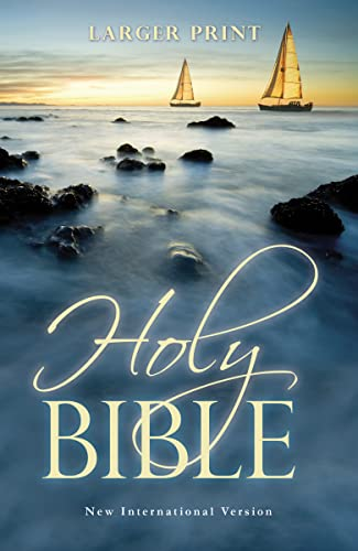 9781563207211: The Holy Bible: New International Version