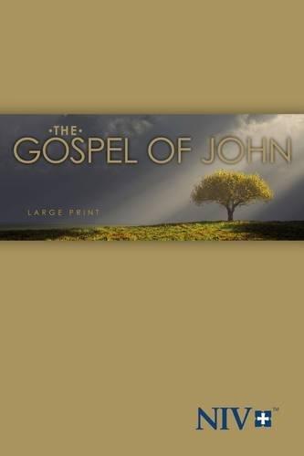 9781563207327: NIV, Gospel of John, Large Print, Paperback