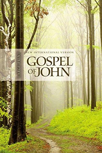 9781563207334: NIV Gospel of John, Large Print