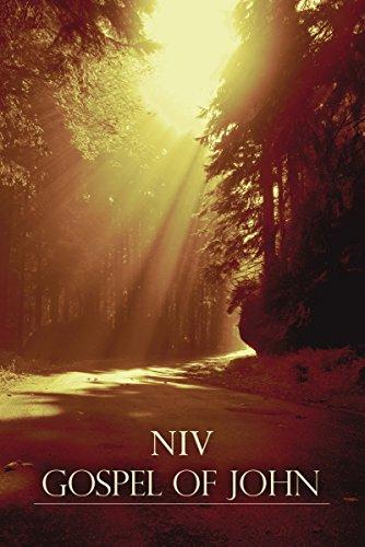 9781563207495: NIV, Gospel of John, Paperback