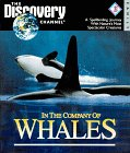 9781563313202: In the Company of Whales - PC - CD-ROM