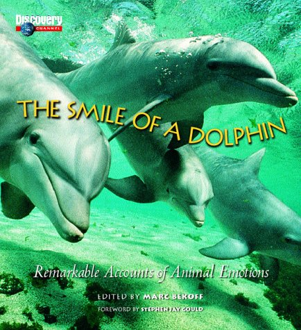 9781563319259: The Smile of a Dolphin: Remarkable Accounts of Animal Emotions