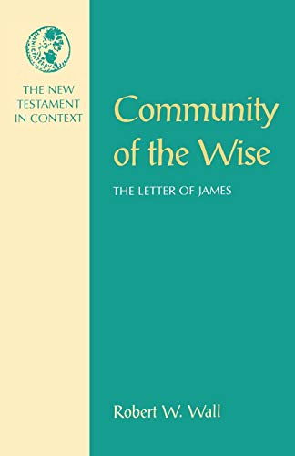 9781563381430: Community of the Wise: The Letter of James (Nt in Context Commentaries)