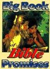 9781563841231: Big Book of Bible Promises