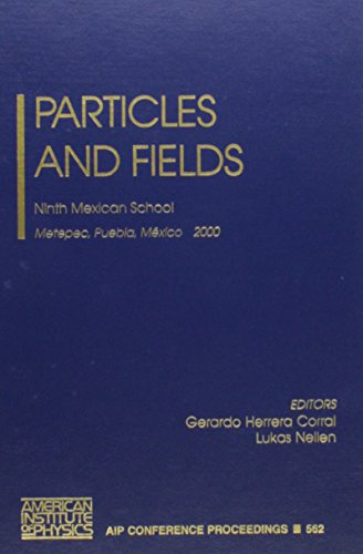 Particles and Fields: Ninth Mexican School, Metepec,