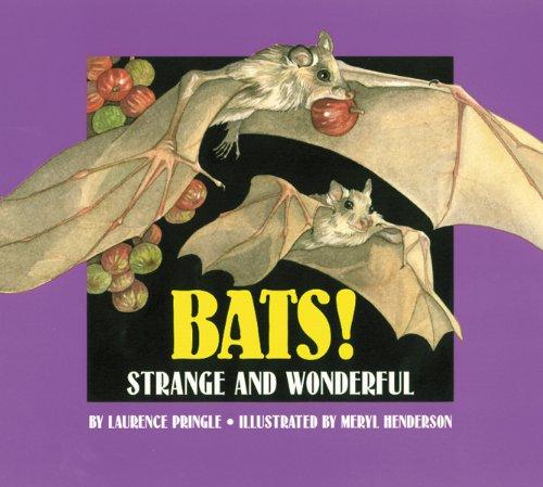 9781563973277: Bats!: Strange and Wonderful
