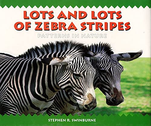 9781563977077: Lots and Lots of Zebra Stripes
