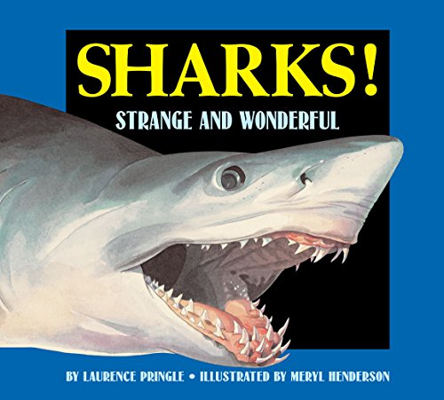 9781563978630: Sharks! (Strange and Wonderful)