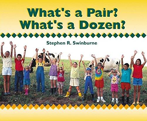 9781563978715: What's a Pair? What's a Dozen?