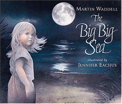 9781564020666: The Big Big Sea
