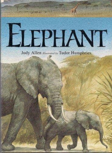 9781564020697: Elephant