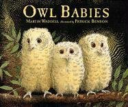 9781564021014: Owl Babies