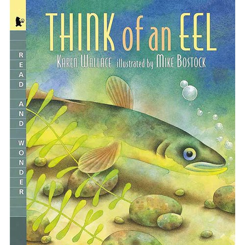 9781564021809: Think of an Eel (Read & wonder)