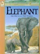 Elephant (1564024385) by Judy Allen