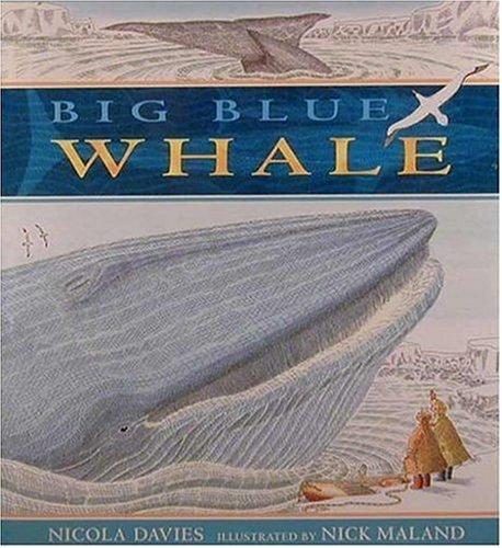 9781564028952: Big Blue Whale