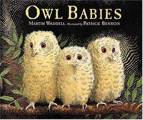 9781564029652: Owl Babies