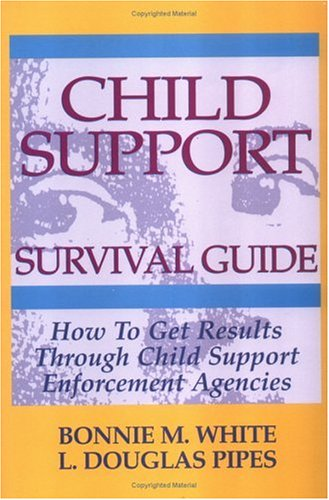 9781564143105: Child Support Survival Guide: How to Get Results Through Child Support Enforcement Agencies