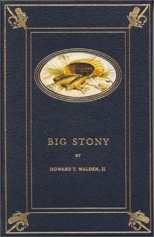 9781564160454: Big Stony