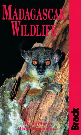 9781564409478: Madagascar Wildlife (Bradt Guides)