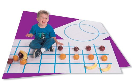 9781564517081: Graphing Mat