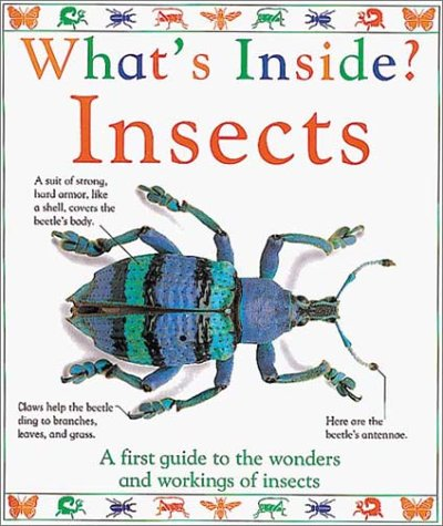 9781564580030: Insects (What's Inside?)