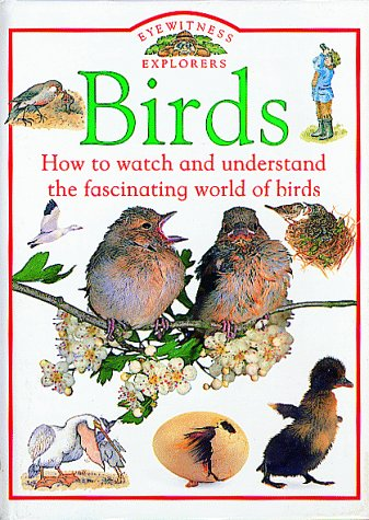 9781564580214: Birds (Eyewitness Explorers)
