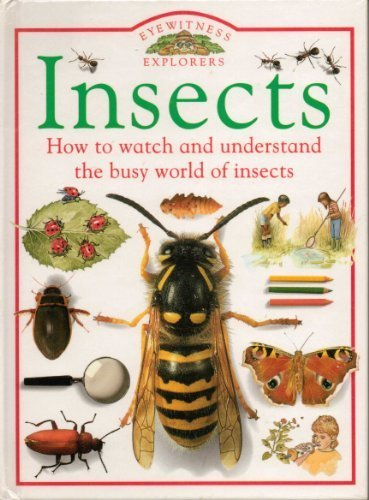 9781564580252: Insects (Eyewitness Explorers)