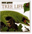 9781564581327: Tree Life (Look Closer Series)