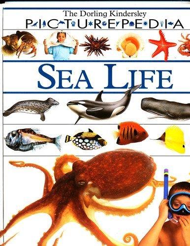 9781564581402: Sea Life (DK Picturepedia)
