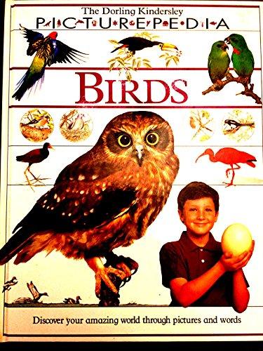 9781564582164: Birds (DK Picturepedia)