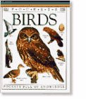 9781564586612: Birds (Pocket Guides)