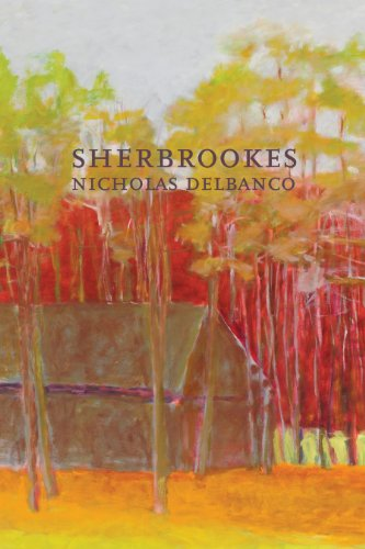 9781564785879: Sherbrookes: Possession / Sherbrookes / Stillness (American Literature Series)