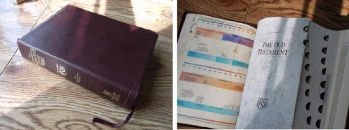The International Inductive Study Bible: Niv Burgundy Gold Bonded Indexed
