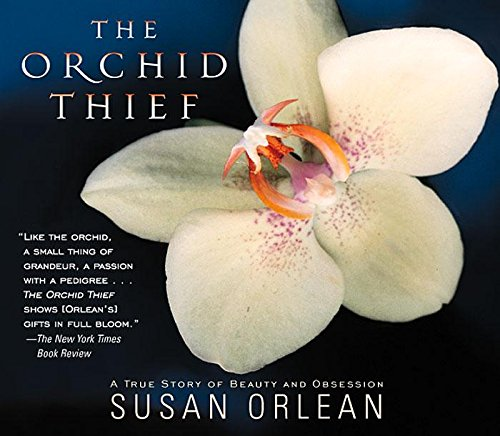 9781565116900: The Orchid Thief