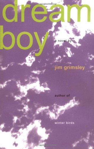 9781565121065: Dream Boy: A Novel