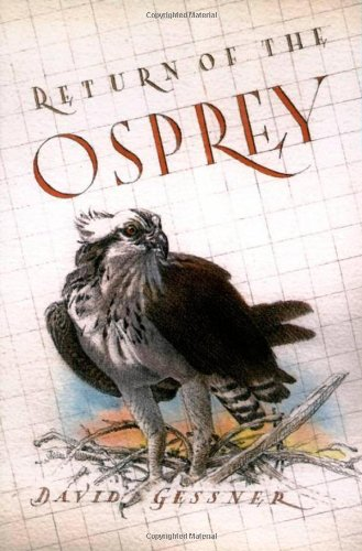 Return of the Osprey: A Season of Flight and Wonder (Signed First Edition): David Gesner