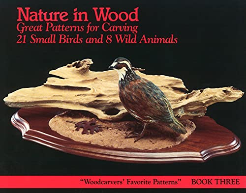 9781565230064: Nature in Wood: Book Three (The Woodcarver's Favorite Pattern series)