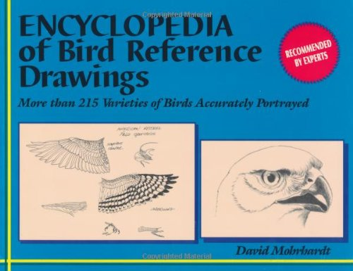 Encyclopedia of Bird Reference Drawings: More than 215 Varieties of Birds Accurately Portrayed: ...