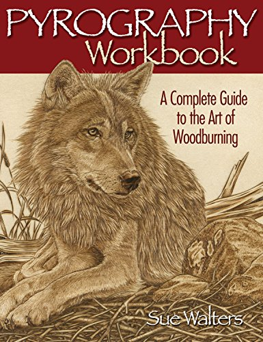 9781565232587: Pyrography Workbook: A Complete Guide to the Art of Woodburning