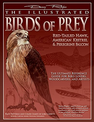 The Illustrated Birds of Prey: Red-Tailed Hawk, American Kestrel & Peregrine Falcon: The ...