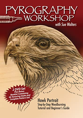 9781565234413: Pyrography Workshop With Sue Walters: Hawk Portrait, Step-by-step Woodburning Tutorial and Beginner's Guide