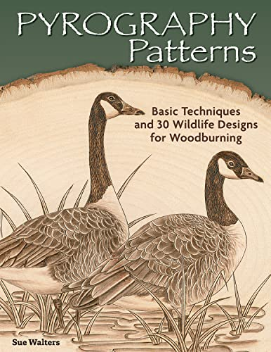 9781565238190: Pyrography Patterns: Basic Techniques and 30 Wildlife Designs for Woodburning