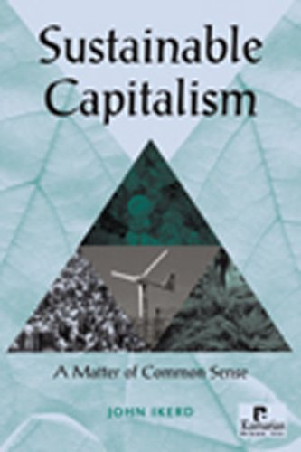 9781565492066: Sustainable Capitalism: A Matter of Common Sense