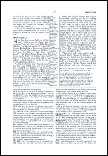 Study Bible-NIV-Loose-Leaf Pages Only