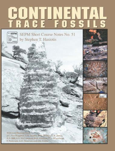 9781565761247: Continental Trace Fossils: 2002 (Sepm Short Course Notes)