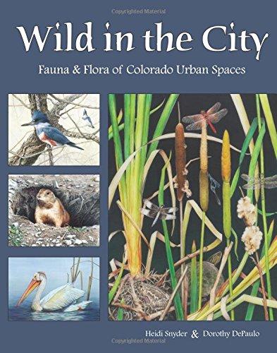 Wild in the City: Fauna & Flora of Colorado Open Spaces: Dorothy Depaulo; Heidi Snyder