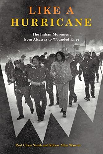 american indian movement activism and repression essay